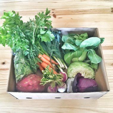 Harvest of Hope Winter box